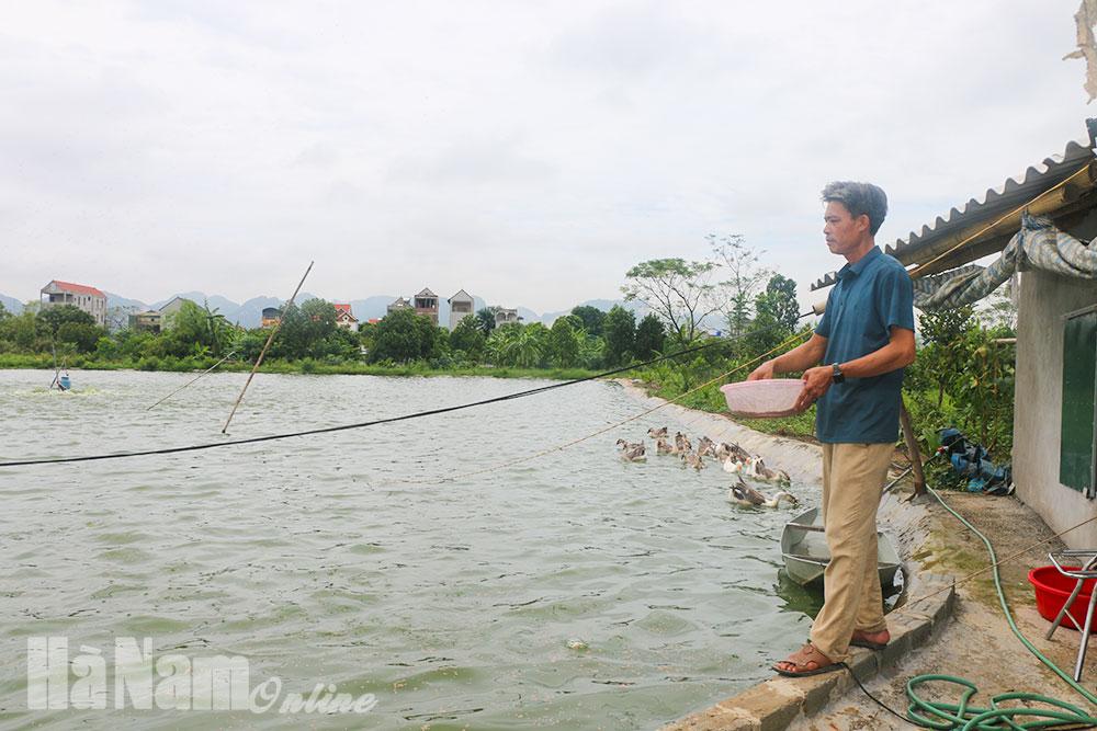 Bảo đảm an toàn diện tích nuôi trồng thủy sản trong mùa mưa bão