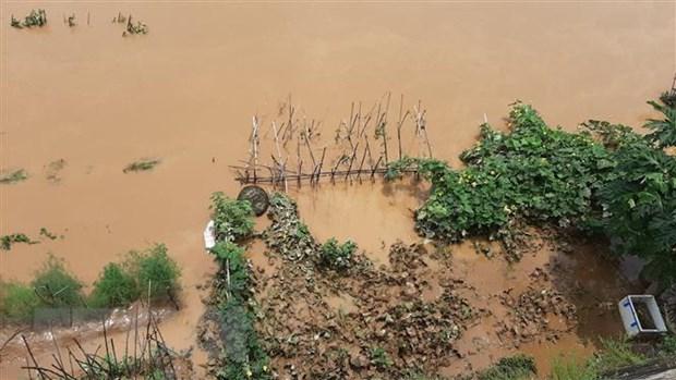 Xuất hiện đợt lũ trên sông HồngThái Bình nhiều vùng biển nguy hiểm