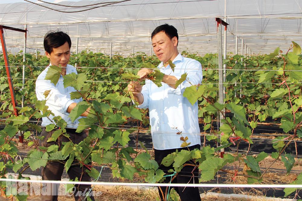 Đảng bộ huyện Bình Lục tăng cường công tác kiểm tra giám sát