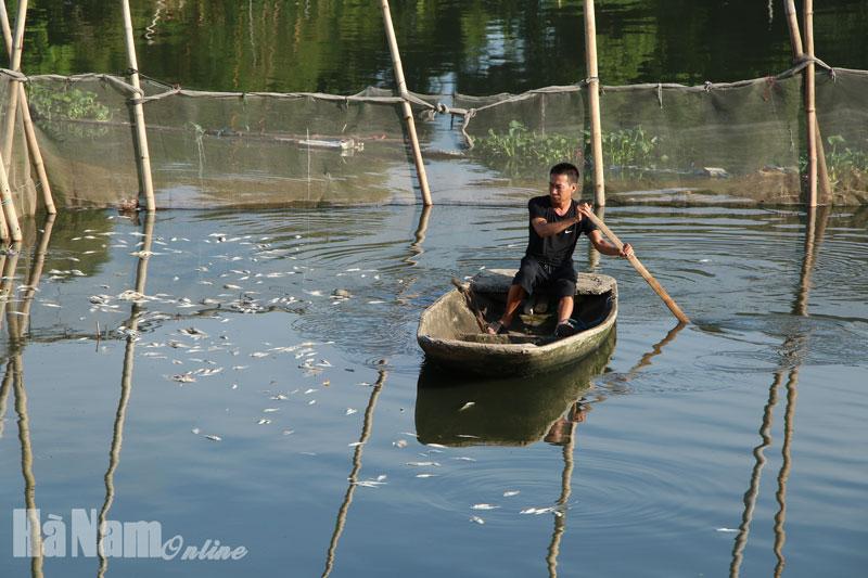Sông Châu kêu cứu