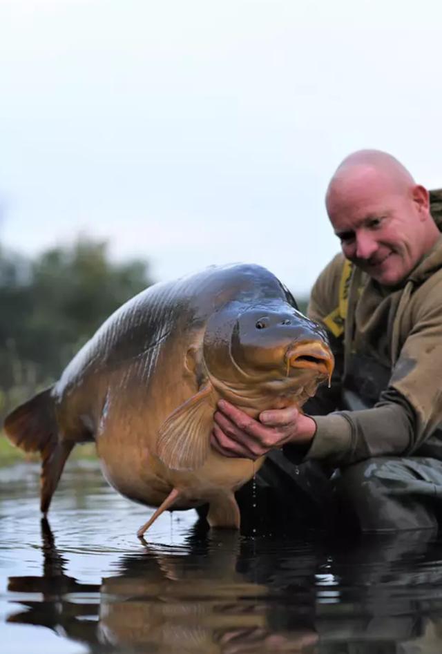 Bắt được cá chép khổng lồ nặng 34 kg
