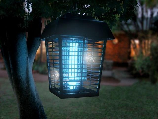 Đèn bắt muỗi có thực sự hiệu quả như quảng cáo